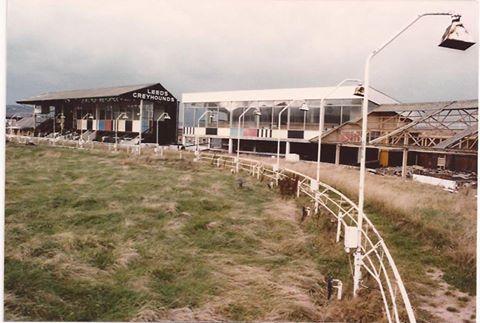 racing post greyhounds